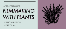 Filmmaking with Plants